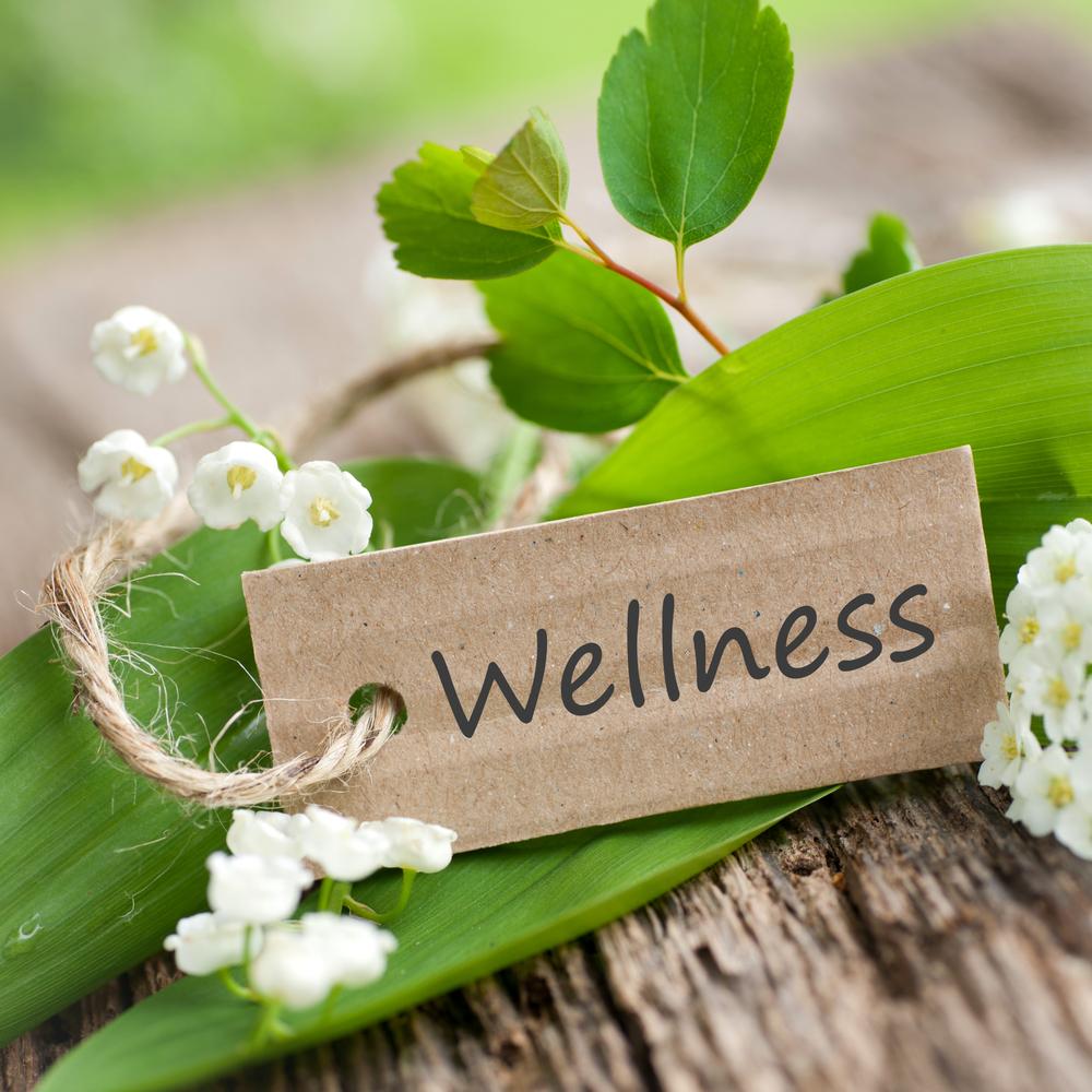 Omega Wellness Retreat Weekend: August 7-9, 2020